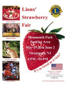Strawberry Flier 2019